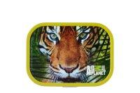 brotdose campus - animal planet tiger